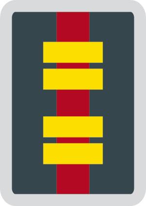 Dienststellungsabzeichen Op. Krisenmanager